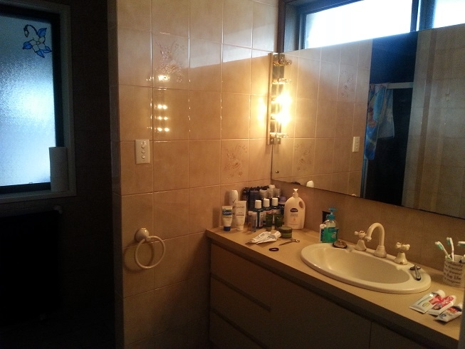 Ensuite before.jpg